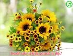 Drumul vietii sa-ti fie presarat cu flori!